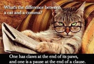Cat-comma